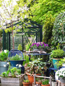 Urban garden / small / mini / English vertical garden with greenhouse nice and green fresh start of the spring growing your own vegetables