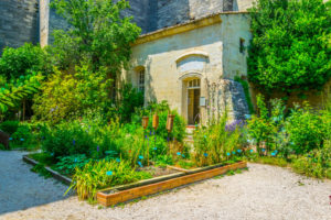 Medieval garden in the french city Uzes
