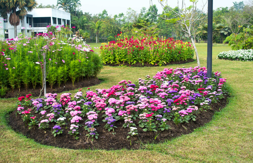 https://www.shutterstock.com/image-photo/multicolored-flowerbed-on-lawn-horizontal-shot-168237845